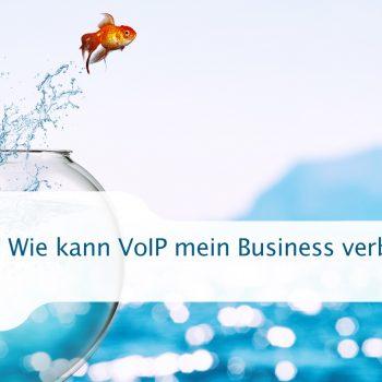 Wie kann VoIP mein Business verbessern